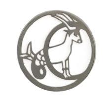 Koziorożec 22 grudnia – 19 stycznia